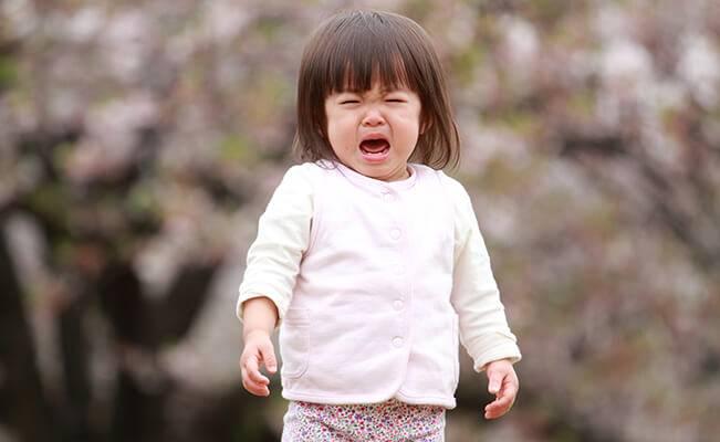 Những câu hỏi thường gặp về sự phát triển của trẻ 12 tháng tuổi